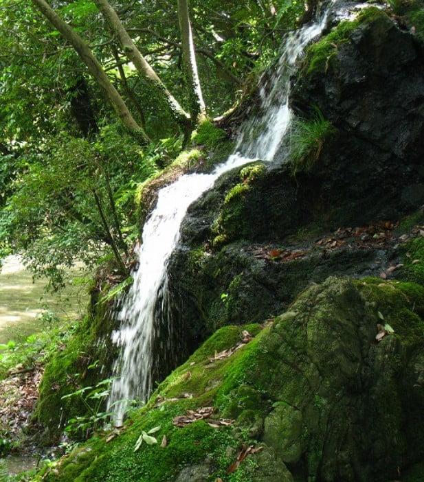 清水寺の音羽の滝の他言してはいけない「タブーな真実」と「音羽の滝の水源」