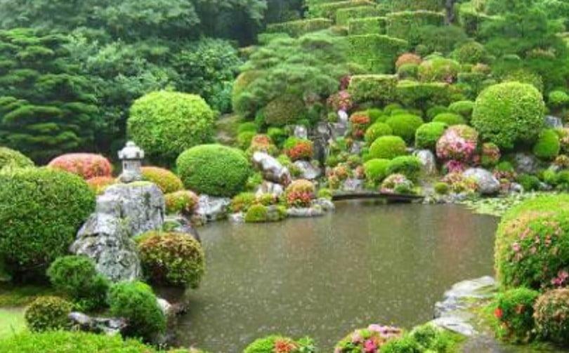 「月の庭」の由来