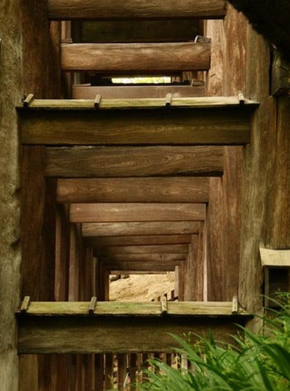 清水寺の舞台の18本の柱の「建築様式・木材」